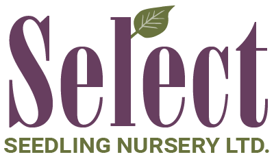 Select Seedling Nursery