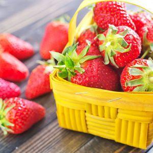 strawberry seascape seedlings for sale online