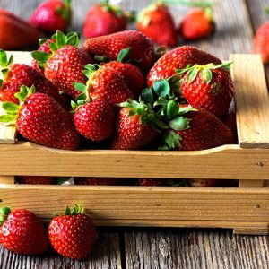 Strawberry seedlings for sale online